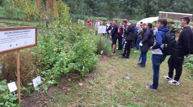 """Ekosistemske rešitve v projektu """"Eko male kmetije"""""""