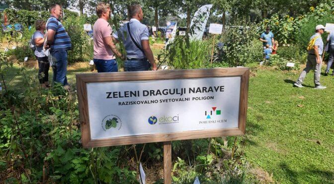 Kmetijske prakse za obvarovanje zdravja narave in ljudi – Zazdravje.net
